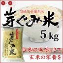 芽ぐみ米 5kg【糖質 ギャバ 特許米 米 発芽 玄米】10P09Jul16