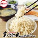 芽ぐみ米 5kg 30年 【期間限定 コシヒカリ!特別栽培米 一等米 発芽玄米 玄米 ギャバ ダイエット めぐみ 米 食物繊維…