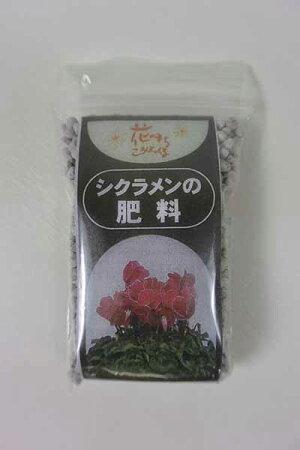 【数量限定】【花苗】シクラメンサントリーセレナーディアロイヤルブルーブリキポット(4号鉢)&肥料付き
