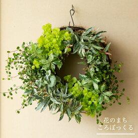 【花のまちころぼっくる】リーフのハンギングリース吊るす 立て掛ける 直置き寄せ植えリース ギャザリングおうち時間を楽しもう