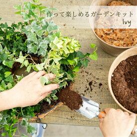 【花のまちころぼっくる】キット季節のアイビーのハンギングリースDIY 手作りガーデン つくって飾る吊るす 立て掛ける 直置き寄せ植えリース ギャザリングおうち時間を楽しもう