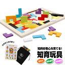 知育玩具 木製パズル モンテッソーリ教具 知育 おもちゃ 知育おもちゃ 木の玩具 木のおもちゃ 型はめ 型はめパズル 男…