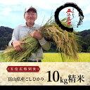【平成28年産】五位庄特別米(富山県産こしひかり)精米10kg【RCP】