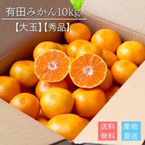 産地直送【秀品】 和歌山県産 有田みかん 10kg 大玉
