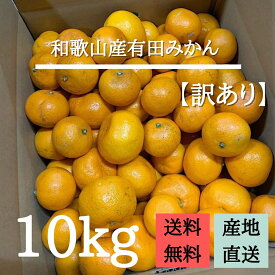 【産地直送】和歌山産 有田みかん 10kg (訳あり)