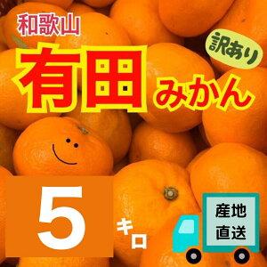 【産地直送】和歌山産 有田みかん 5kg (訳あり)