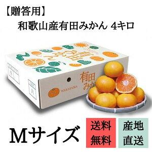 【贈答品】和歌山県産 有田みかん 化粧箱入り 4kg Мサイズ 2箱