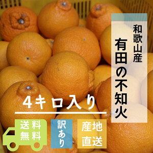 和歌山県産 不知火(しらぬい) 4kg【家庭用】