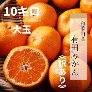 【産地直送】和歌山産 有田みかん 10kg 大玉(訳あり)