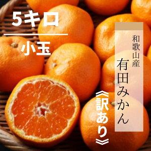 【産地直送】和歌山産 有田みかん 5kg 小玉(訳あり)