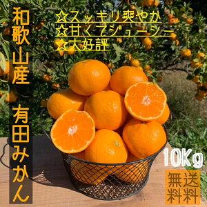 産地直送 【秀品】 和歌山県産 有田みかん 10kg