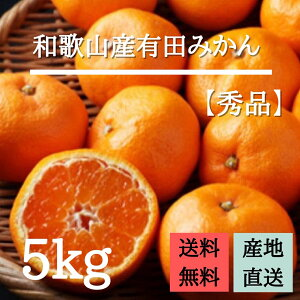 産地直送 【秀品】 和歌山県産 有田みかん 5kg