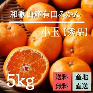 産地直送【秀品】和歌山産 有田みかん 5kg 小玉