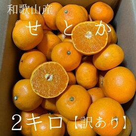 【産地直送】 和歌山県産 ありだ せとか 訳あり 2kg 2キロ