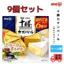 明治 北海道十勝カマンベールチーズ切れてるタイプ(90g)×9個 meiji 送料無料