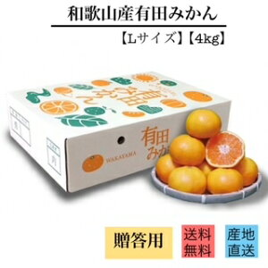 【贈答品】和歌山県産 有田みかん 化粧箱入り 4kg Lサイズ 2箱