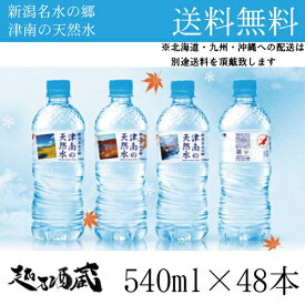 国産 新潟名水の郷 津南の天然水 ナチュラルミネラルウォーター 水 540ml×48本(2ケース) ※北海道・九州・沖縄への配送は別途送料頂戴致します