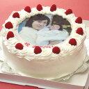 写真ケーキ(丸) 7号 生クリーム【冷凍 到着後は冷蔵庫で4〜5時間保管解凍】誕生日ケ−キ