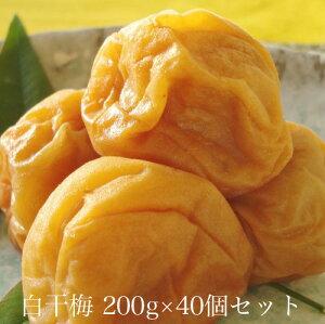 白干梅200g × 40個セット 【和歌山県産】