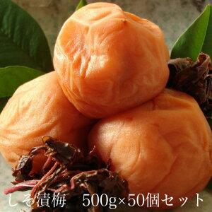 しそ漬梅500g × 50個セット 【和歌山県産】 【10P03Aug09】