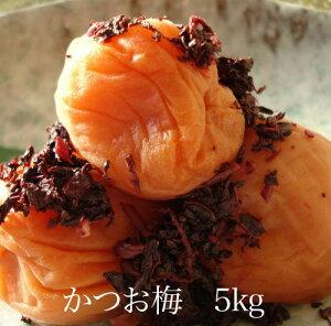かつお梅5kg 【和歌山県産】