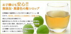 [送料無料(一部地域除く)]無添加梅シロップ(梅ジュース)500ml1箱(6本入り)静岡水も添加物も一切くわえていないノンアルコールの飲み物です。お湯や冷水、お好みでウィスキーなどで割ってお召し上がり下さい。静岡