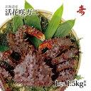 ギフト 花咲ガニ カニ 北海道産 希少 花咲蟹 1.5kg オス 濃厚な甘味 数量限定 内祝い お返し