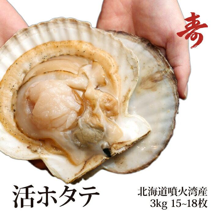 ギフト 北海道 噴火湾産 活ホタテ 3kg 15〜18枚 殻付 お刺身やバーベキュー、寿司ネタに! 冷蔵 ほたて 帆立 道産 お中元 お歳暮 内祝い お返し