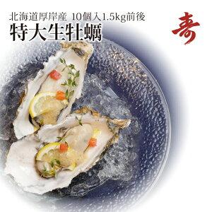 ギフト 牡蠣 殻付き 生牡蠣 カキ 北海道 厚岸 マルえもん 希少な特大3Lサイズ(1個約150g) 10個生食可 内祝い お返し