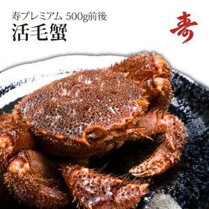 ギフト 毛ガニ カニ 500g 前後 北海道産 冷蔵 毛蟹 毛がに 内祝い お返し 活茹で選択可