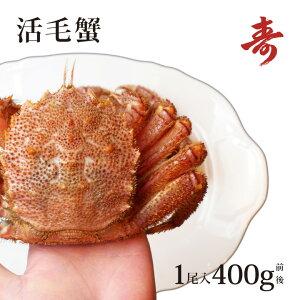 毛ガニ カニ ギフト 400g 前後 北海道産 冷蔵 毛蟹 毛がに 内祝い お返し 活茹で選択可