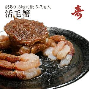 毛ガニ カニ 訳あり 3kg 前後 5〜7尾 北海道産 冷蔵 毛がに 蟹 活蟹 刺し身