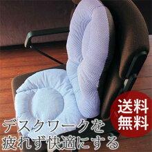 【送料無料】マーナ背すじキープクッション&骨盤座ぶとんセット(ブルーストライプ)