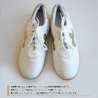 太極拳靴・カンフーシューズ〜金飛雲〜