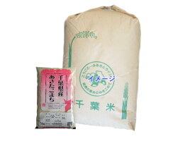30年産 千葉県産 あきたこまち 玄米 30kg※外袋はイメージです。