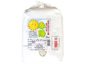 令和元年 千葉県産 春陽(低グルテリン米)白米 5kg