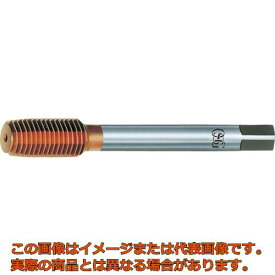 OSG 転造タップ TiNコーティング ニューロールタップ 21683 TINNRTBSTD1M2.6X0.45