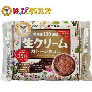 青華堂 乳酸菌100億個 生クリームガトーショコラ(10枚入)はっぴーディアーズ 洋菓子 お菓子 スイーツ おやつ