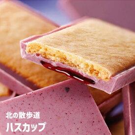 morimoto 北の散歩道 ハスカップ 8個入チョコレートクッキー フルーツソース 果実チョコサンド