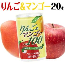長野興農 りんご&マンゴー100 160g × 20本