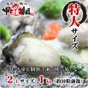 ジャンボ広島かき1kg(解凍後850g/30〜40粒前後)送料無料【カキ】【牡蠣】【かき】
