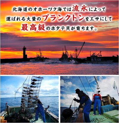 ジャンボ生ほたて貝柱1kg(21-25粒入り)送料無料【帆立】【ホタテ】【ほたて】【刺身】