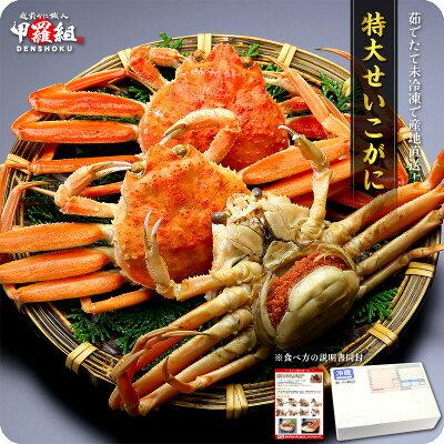 せいこ蟹(特大3ハイもしくは大4ハイ入り/ご選択不可)