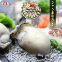 【特大2Lサイズ限定】ジャンボ広島かき1kg(解凍後850g/30粒前後)【カキ】【牡蠣】【かき】【送料無料】