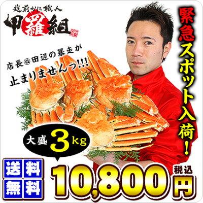 ボイルずわい蟹/姿3kg(4-6匹入り)[送料無料]