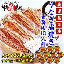 うなぎ蒲焼き(大サイズ/160~170g前後)×5本
