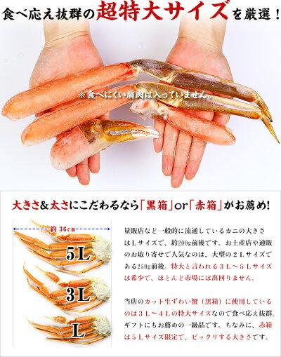面倒な肩肉なし♪【生食OK】超特大5Lサイズ!カット生ずわい蟹(特級品/赤箱)内容量1000g/総重量1300g[送料無料]約4人前【カニ】【かに】【蟹】【カニしゃぶ】【鍋】