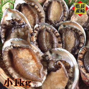 ギフト プレゼント 感謝の気持ち 長崎県産 天然アワビ 小 1kg以上 お刺身 炊き込みご飯 ステーキ 海鮮 ギフト