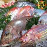 長崎県産プレミアム鮮魚セットギフトにもどうぞ。
