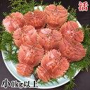 長崎県産 活ウチワエビ 小 1kg以上 【のし対応】ギフトにもどうぞ。 伊勢海老に匹敵するおいしさ